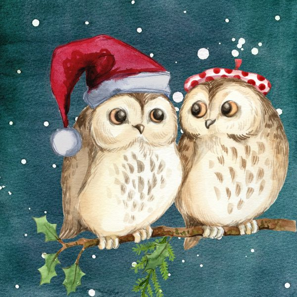 Have-an-owlly-holly-Christmas-wise-witty-quote
